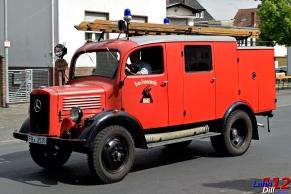 FF-WOLF-01